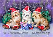 Kayomi, CHRISTMAS ANIMALS, paintings, ThreeSantas_M, USKH156,#XA# Weihnachten, Navidad, illustrations, pinturas
