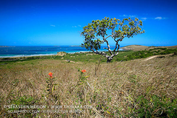 Presqu'île de Uitoé, côte ouest Nouvelle-Calédonie