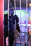 2015 SIMG - Human Zoo Party