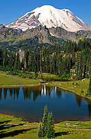 Vertical view of Mount Rainier above Lower Tipsoo Lakes in late summer. Mount Rainier National Park, Washington State.