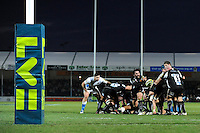 Chris Whitehead of Exeter Chiefs stands in as scrum half during the LV= Cup match between Exeter Chiefs and Bath Rugby at Sandy Park Stadium on Sunday 5th February 2012 (Photo by Rob Munro)
