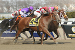 April 5, 2014: Coup de Grace with Javier CASTELLANO wins the Grade 3 Bay Shore Stakes for 3-year olds, going 7 fulongs at Aqueduct Racetrack.  Trainer: Chad Brown. Owner: Red Oak Stable. Sue Kawczynski/ESW/CSM