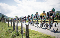 yellow jersey / GC leader Lukas Pöstlberger (AUT/BORA - hansgrohe) escorted by his team at the front of the race<br /> <br /> 73rd Critérium du Dauphiné 2021 (2.UWT)<br /> Stage 6 from Loriol-sur-Drome to Le Sappey-en-Chartreuse (167km)<br /> <br /> ©kramon