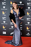 Cuca Escribano attends to the Feroz Awards 2017 in Madrid, Spain. January 23, 2017. (ALTERPHOTOS/BorjaB.Hojas)