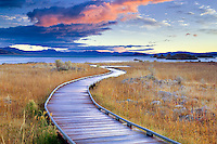 Borad pathway to Mono Lake with sunrise clouds. California