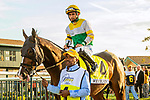 SEPT 25, 2021: Weyburn post parade in the Gr.1 Pennsylvania Derby, for 3-year olds, going 1 1/8 mile, at Parx Racing, Bensalem, PA. Sue Kawczynski/Eclipse Sportswire/CSM