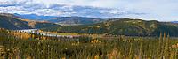 Panorama of the Yukon River winding through the autumn boreal forest, Interior, Alaska.