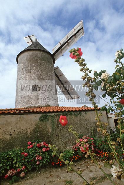 Europe/France/Pays de la Loire/85/Vendée/Env de Sallertaine: Le moulin de Rairé