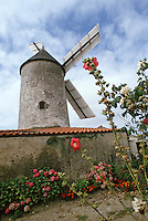 Europe/France/Pays de la Loire/85/Vendée/Env de Sallertaine : Le moulin de Rairé