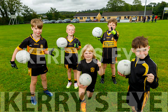 Getting ready to enjoy the reopening of the GAA field in Currow.<br /> Front right: Darragh Coffey<br /> Kneeling: Diarmuid Matthews.<br /> Back l to r: Alan McCarthy, Dylan Reidy and Gearoid Fleming.