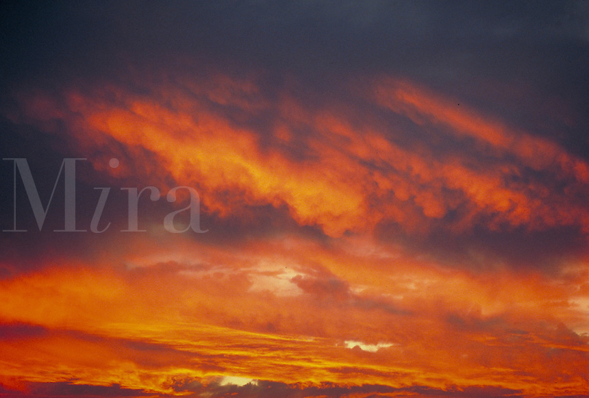 Stratocumulus clouds reflecting red sunset colors. Houston Texas.