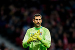 Goalkeeper Diego Lopez of RCD Espanyol looks on during the La Liga 2018-19 match between Atletico de Madrid and RCD Espanyol at Wanda Metropolitano on December 22 2018 in Madrid, Spain. Photo by Diego Souto / Power Sport Images
