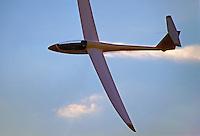 """SZD-55-1 """" Nexus """" im Ueberflug: DEUTSCHLAND 15.12.2014: Die SZD-55-1 ist ein Hochleistungs-Segelflugzeug der Standardklasse und wurde 1987 konstruiert. In ihren Flugleistungen ist sie annaehernd mit der Rolladen Schneider LS8 vergleichbar. PZL Bielsko hat die Herstellung von Segelflugzeugen eingestellt. Aktuell wird sie von dem polnischen Hersteller Allstar PZL Glider Sp. z o.o. unter dem Namen """"Nexus"""" weitergebaut. Das Segelflugzeug laesst Ballastwasser ab um zu landen."""