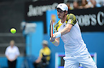 Murray wins at Australian Open in Melbourne Australia on 17th January 2013