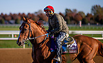 November 2, 2020: Chaos Theory, trained by trainer John Sadler, exercises in preparation for the Breeders' Cup Turf Sprint at at Keeneland Racetrack in Lexington, Kentucky on November 2, 2020. Alex Evers/Eclipse Sportswire/Breeders Cup