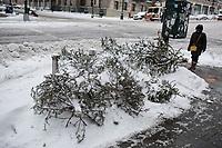 Alberi di Natale abbandonati dopo le feste Abandoned Christmas trees after holidays USA New York Alberi di Natale abbandonati dopo le feste Abandoned Christmas trees after holidays