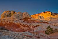 Sand stone formation in Whitepocket, Vermilion Cliffs National Monument.