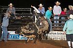 SEBRA - Danville, VA - 8.19.2017 - Bulls & Action