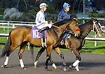 Little Jerry (no. 10), ridden by Aaron Gryder and trained by Richard Baltas, runs in the grade 1 CashCall Futurity Stakes for two year olds on December 15, 2012 at Hollywood Park in Inglewood, California.  (Bob Mayberger/Eclipse Sportswire)