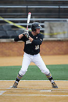 Joe Napolitano (12) of the Wake Forest Demon Deacons at bat against the Towson Tigers at Wake Forest Baseball Park on March 1, 2015 in Winston-Salem, North Carolina.  The Demon Deacons defeated the Tigers 15-8.  (Brian Westerholt/Four Seam Images)