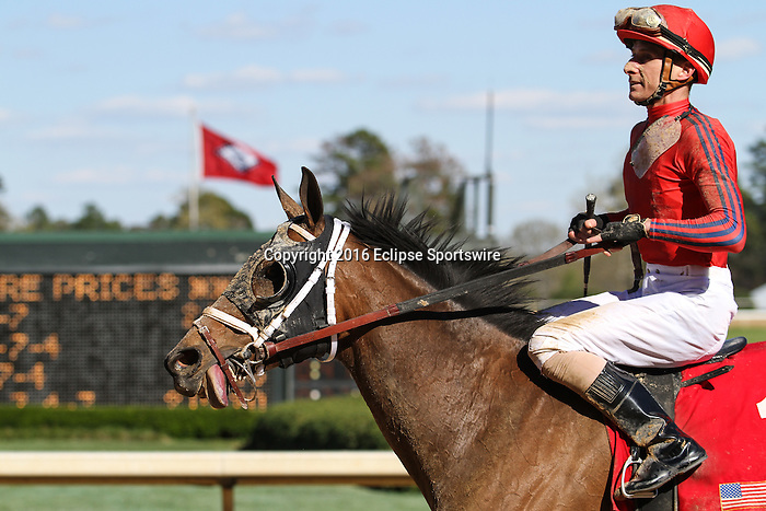HOT SPRINGS, AR - MARCH 19:  Call Pat #1 with Joseph Rocco, Jr. following their win in the Azeri Stakes at Oaklawn Park on March 19, 2016 in Hot Springs, AR. (Photo by Ciara Bowen/Eclipse Sportswire/Getty Images)