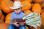 Long day at the pumpkin patch, Avila Valley Barn, San Luis Obispo County, California.(Evan)