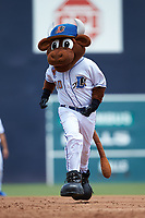 Durham Bulls mascot Wool E. Bull runs the bases between innings of the game against the Columbus Clippers at Durham Bulls Athletic Park on June 1, 2019 in Durham, North Carolina. The Bulls defeated the Clippers 11-5 in game one of a doubleheader. (Brian Westerholt/Four Seam Images)