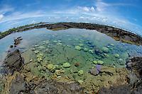 Kapoho tide pools Puna district The Big Island of Hawaii