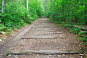 Railroad ties from the old East Branch & Lincoln Railroad along Lincoln Woods Trail in Lincoln, New Hampshire USA. This was a logging Railroad which operated from 1893 - 1948.
