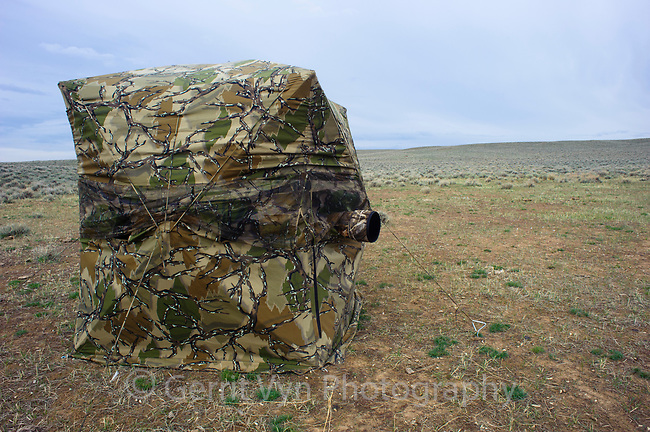 Photography blind in sage-lands. Freemont County, Wyoming. April.