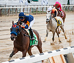 July 3, 2021: Truth Hurts, ridden by Luis Saez, wins the 2021 running of the Perfect Sting S. at Belmont Park in Elmont, NY. Sophie Shore/ESW/CSM