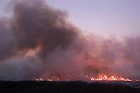 Centenas de pequenos focos de incendio produzidos por queima de pasto, carvoarias ou mesmo fogo a beira da estrada cobrem de fumaca varios municipio da regiao do sul o estado a cerca de 300 km da capital Belem.Tailandia Para Brasil24/09/2003Foto Paulo Santos