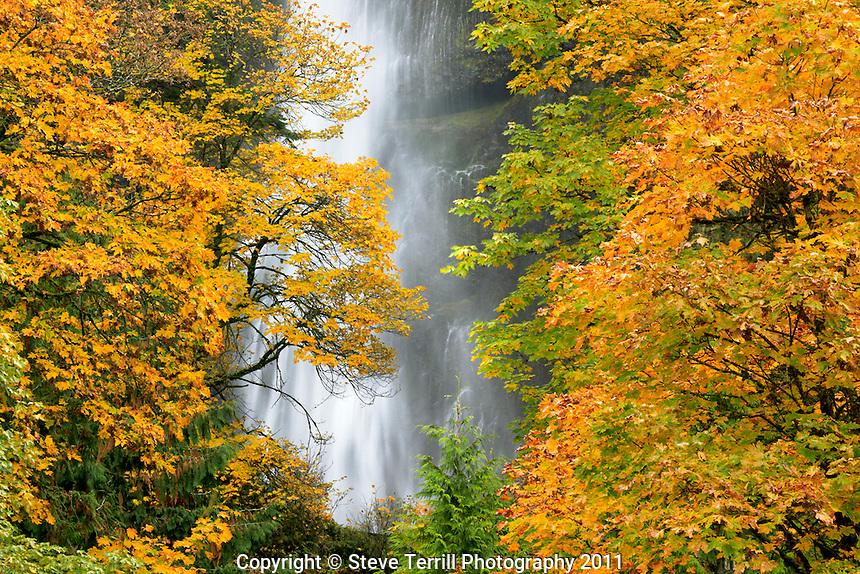 Mutltnomah Falls in Columbia River Gorge National Scenic Area, Oregon
