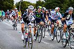 Team Giant-Shimano, Vattenfall Cyclassics, Hamburg, Germany, 24 August 2014, Photo by Thomas van Bracht