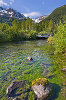 Stream with salmon viewing platform, Portage Valley, Chugach mountains, southcentral, Alaska.