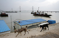 Dongting Lake, Hunan Province. Dongting Lake has decreased in size in recent decades as a result of land reclamation and damming of the Yangtze. China. 2010