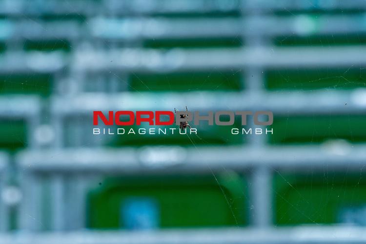 Feature Bild: Werder gefangen im Netz der Abstiegs-Spinne<br /> <br /> <br /> Sport: nphgm001: Fussball: 1. Bundesliga: Saison 19/20: 34. Spieltag: SV Werder Bremen vs 1.FC Koeln  27.06.2020<br /> <br /> Foto: gumzmedia/nordphoto/POOL <br /> <br /> DFL regulations prohibit any use of photographs as image sequences and/or quasi-video.<br /> EDITORIAL USE ONLY<br /> National and international News-Agencies OUT.