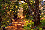 A Pathway located in Red Rock State Park near Sedona, Arizona.