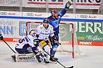 Frederik Storm (Nr.9 - ERC Ingolstadt) jubelt nach dem 1:0 durch Tim Wohlgemuth (Nr.33 - ERC Ingolstadt), Torwart Mathias Niederberger (Nr.35 - Eisbären Berlin) und Simon Despres (Nr.47 - Eisbären Berlin) bedient beim Spiel im Halbfinale der DEL, ERC Ingolstadt (dunkel) - Eisbaeren Berlin (hell).<br /> <br /> Foto © PIX-Sportfotos *** Foto ist honorarpflichtig! *** Auf Anfrage in hoeherer Qualitaet/Aufloesung. Belegexemplar erbeten. Veroeffentlichung ausschliesslich fuer journalistisch-publizistische Zwecke. For editorial use only.