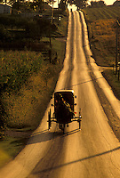 AJ3037, amish, buggy, Amish country, Lancaster County, Pennsylvania, road, Pennsylvania Dutch Country, An Amish horse and buggy trot up the long straight shiny black country road in Lancaster in the state of Pennsylvania.
