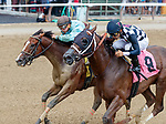 The Red Dude (no. 8) wins Race 4 July 22 at Saratoga Race Course, Saratoga Springs, NY.    Ridden by Luis Saez and trained by Ron Moquett, The Red Dude finished a neck in front of Adulation (no. 4) in the 6 ½ furlong race.  (Bruce Dudek/Eclipse Sportswire)
