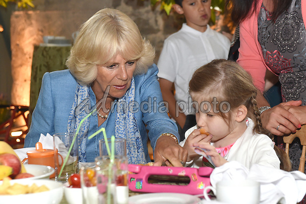 08 July 2015 - Llandovery, Wales - Camilla, Duchess of Cornwall visits Ty Hafan Hospice at the Llwynywermod estate in Llandovery on the third day of her visit to Wales. Photo Credit: Alpha Press/AdMedia