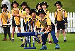 SuperStar Incrediball Cricket