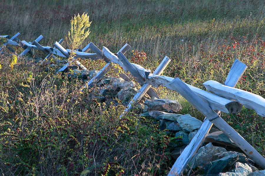 Historic Fence on the Blue Ridge Parkway in Nelson County, VA. Photo/Andrew Shurtleff