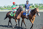 Tower of Texas(12) with Jockey John R. Velazquez aboard at the 155th Queen's Plate at Woodbine Race Course in Toronto, Canada on July 06, 2014.