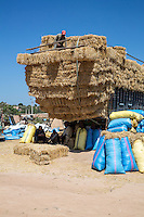 Morocco.  Truckload of Hay Arriving at the Had Draa Market, Essaouira Province.