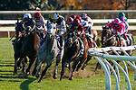 November 7, 2020 :Horses round the corner during the FanDuel Mile presented by PDJF on Breeders' Cup Championship Saturday at Keeneland Race Course in Lexington, Kentucky on November 7, 2020. /Dan Heary/Breeders' Cup/Eclipse Sportswire/CSM