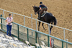 Baltimore, MD- May 16: Scenes during morning workouts in preparation for the 137th Preakness at Pimlico Race Course in Baltimore, MD on 05/16/12. (Ryan Lasek/ Eclipse Sportswire)