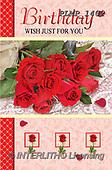 Marek, VALENTINE, VALENTIN, photos+++++,PLMP1402,#v#, EVERYDAY ,roses