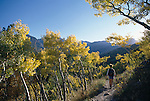 Woman hiking along fall-colored trail with on Bierstadt Moraine, Rocky Mtn Nat'l Park ,CO